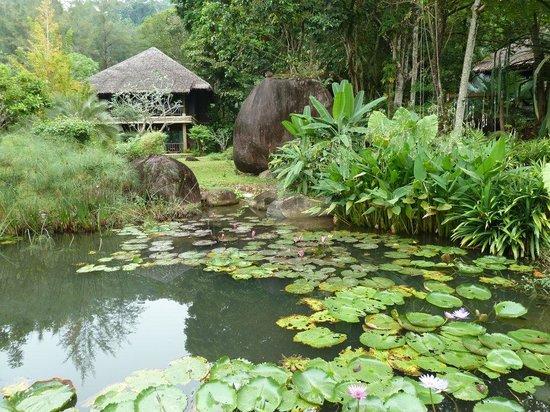 Khaolak Paradise Resort: Khao Lak Paradise Resort