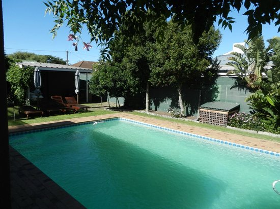 Brown Jug Guest House: Pool area