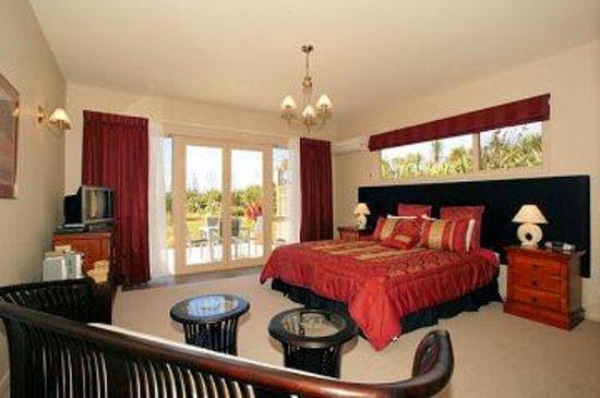 Palm View House Foto