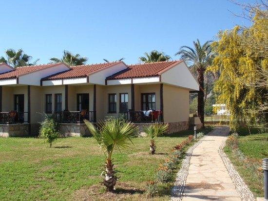 Nerissa Hotel: notre chambre-bungalow
