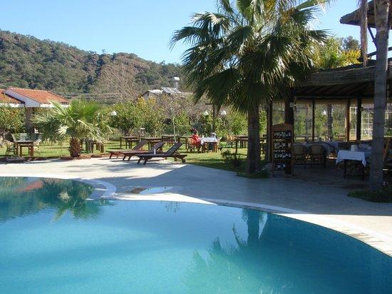 Nerissa Hotel : tous les matins petit déjeuner au bord de la piscine