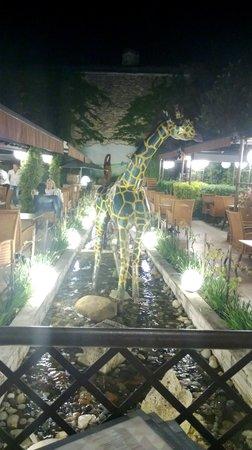 Chez Paul : Terrasse avec rivière