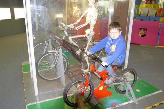 Snibston Discovery Museum and Country Park: Race the Skeleton