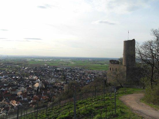 Hotel Restaurant Kaiser: View from Strahlenburg