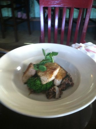 Dally in the Alley Bistro: Cobia