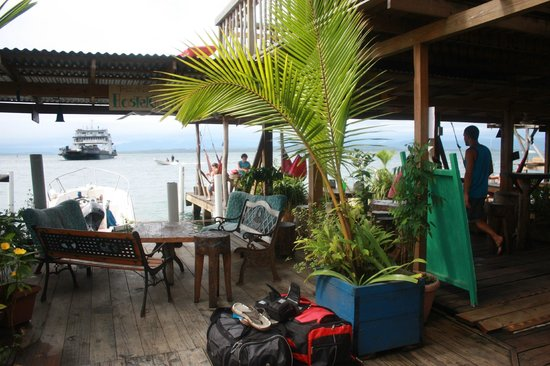 Casa Verde Hostel & Guesthouse : the deck area