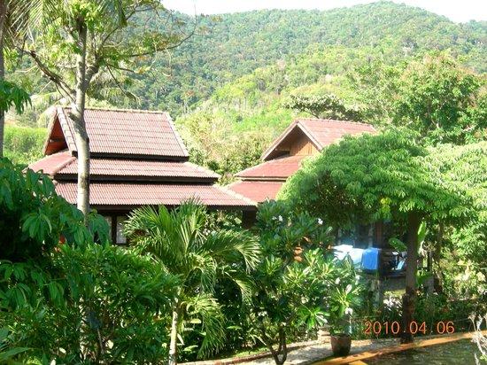 Baan Laanta Resort & Spa: vue des bungalow autour de la piscine