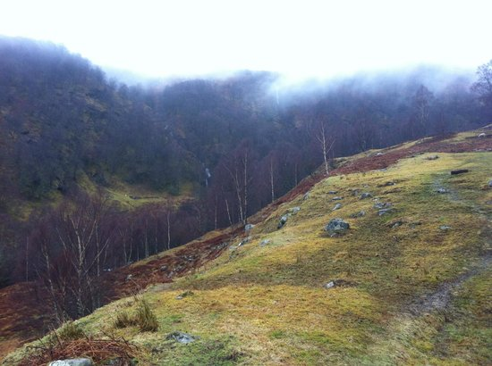 Highland Lodges : Surrounding area