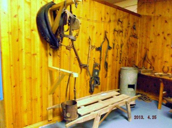 The Milky Way Adventure Park: horse gear