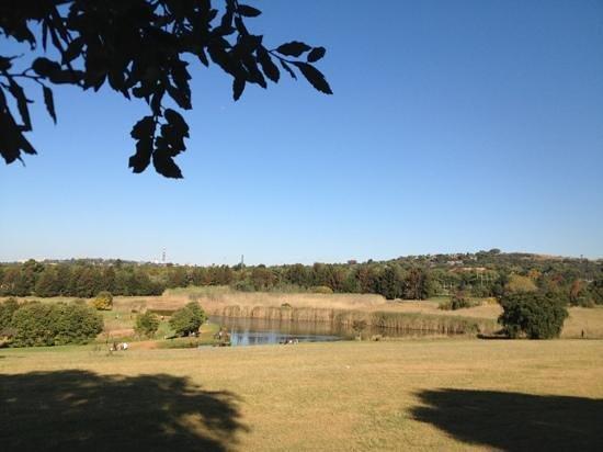 Jardines Botánicos de Johannesburgo y Presa Emmarentia: My postcard view from the bench