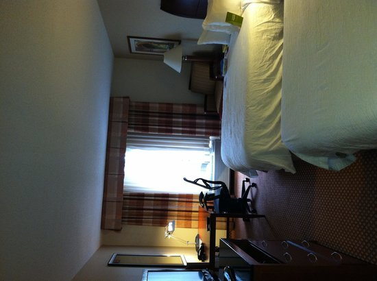 Hilton Garden Inn Chicago / Oakbrook Terrace : Room
