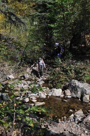 Spearfish Canyon: The many creek crossings on the trail
