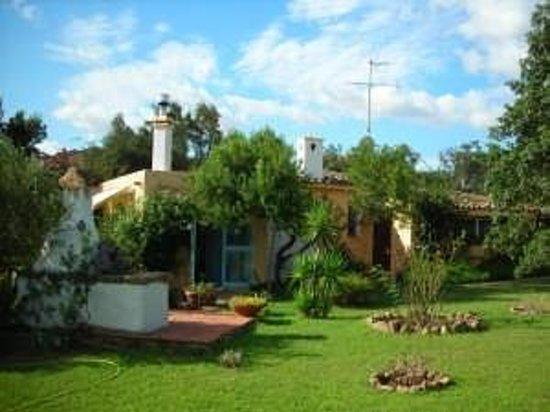 B&B Casa Anna : outside from the garden
