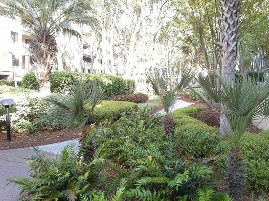 Marriott's Barony Beach Club: Main Bldg.courtyard