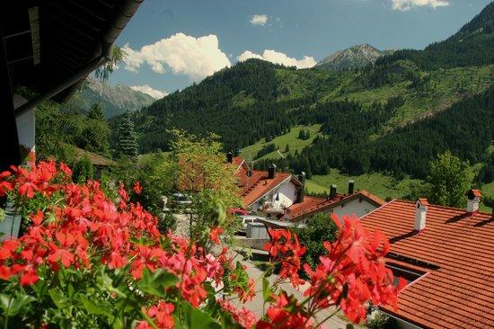 Hotel Schwandenhof: Aussicht