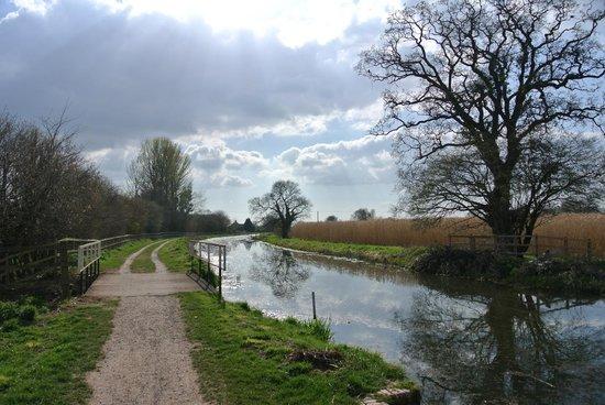 Somerset Towpath: walk along the canal near Creech