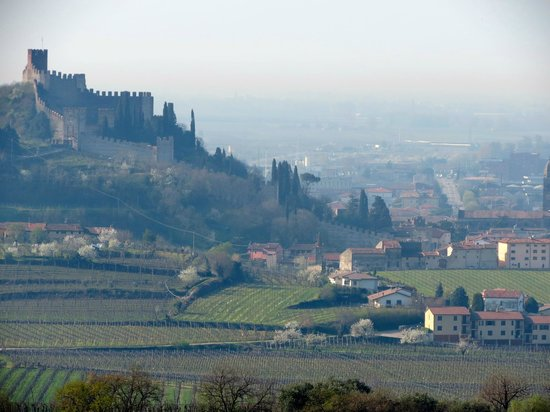 Agriturismo Libero: castle view from the B&B