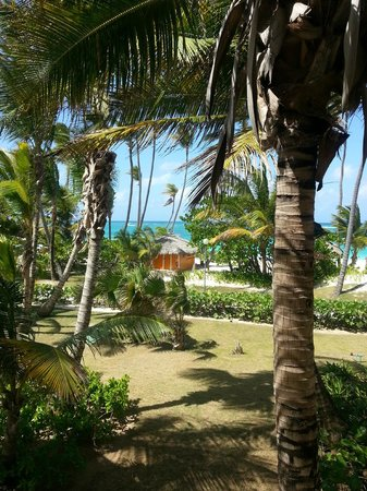 Grand Palladium Palace Resort Spa & Casino: view from our room 8219