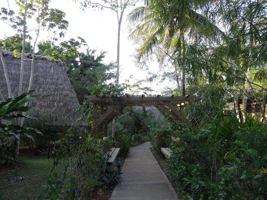 Crystal Paradise Resort: more of beautiful Crystal Paradise