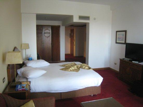金鬱金香弗拉門戈飯店照片
