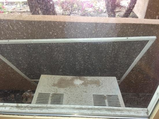 Camarillo Executive Inn & Suites: out the window. no screen and filth