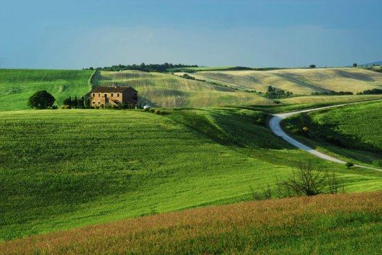 Agriturismo Il Rigo: Poggio Bacoca a maggio