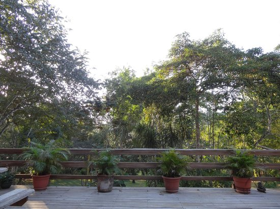 Crystal Paradise Resort: view from observation deck