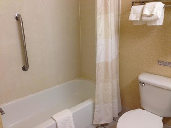 Fairfield Inn Syracuse Clay: bathroom (very clean)
