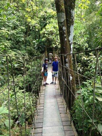 El Chorro Macho: Short hike to the beginner zip line