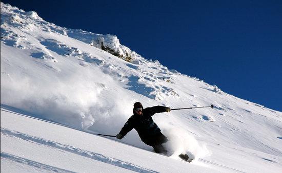Momentum Snowsports