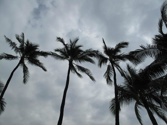 Moana Surfrider, A Westin Resort & Spa: Beach