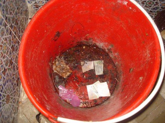 Riad Anastassja: la poubelle de la cuisine