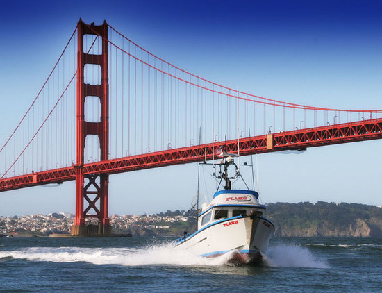 Flash Sport Fishing Charters of San Francisco