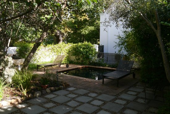 Akademie Street Boutique Hotel and Guest House: The small pool outside our cottage