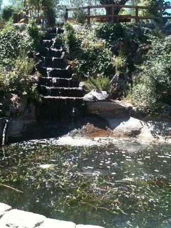 el bosque encantado parque temtico cascada