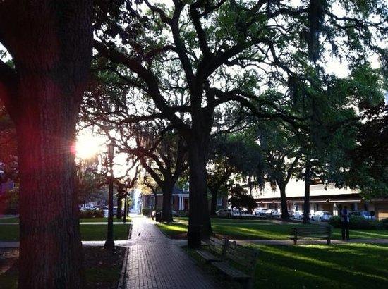 Holiday Inn Express Savannah - Historic District: 1 of many park squares