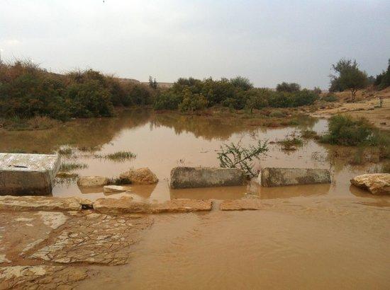 Wadi Hanifah: Rain in wadi