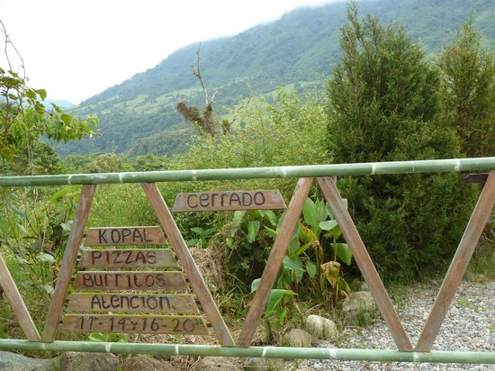 Kopal Ecuador : The cloudforests are just there
