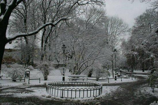 Radisson Blu Hotel Krakow: Pretty park at front of hotel