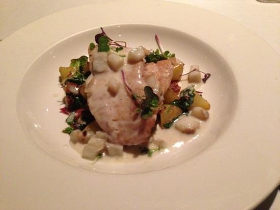 Julep's New Southern Cuisine: Fish of the Day