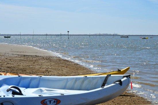 South Kayak: un deporte facil de aprender y divertido