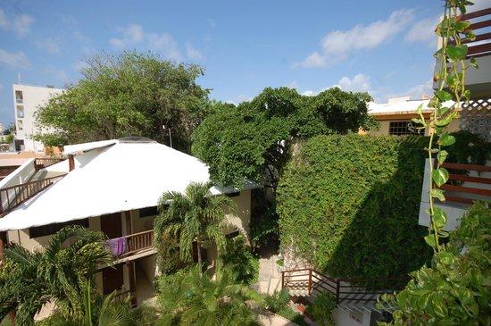 Hotel Posada Sian Ka'an: View from Balcony