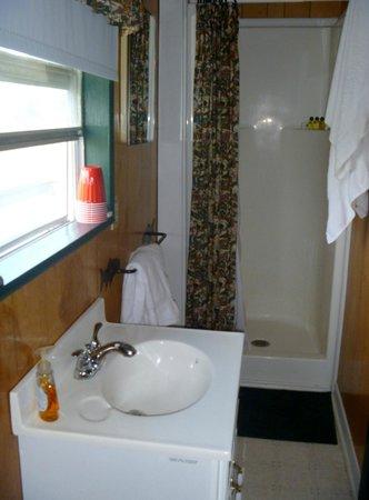 Cedars Cabins: shower half of bathroom