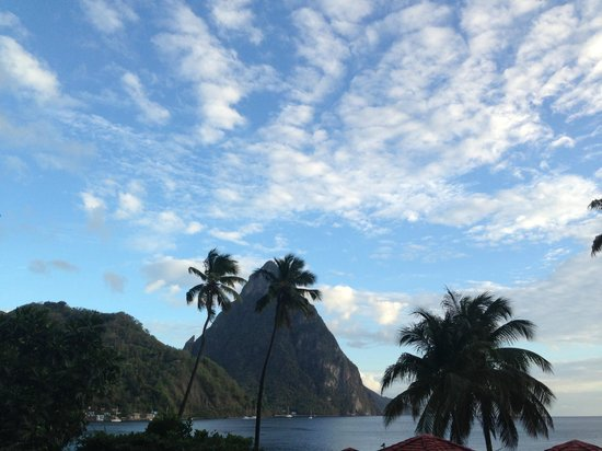 Humming Bird: View of the Petit Piton