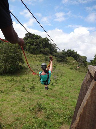 Monkey Jungle and Zip Line Adventures: ziplining