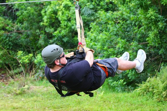 Northshore Zipline Co.: Zip away