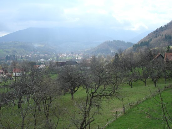 Transylvanian Inn: Castle view )