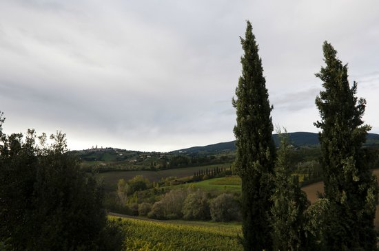 Tenuta Mormoraia: Terrific view