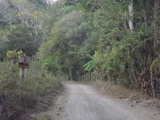 Hotel bungalows SolyLuna los Almendros. : The road to SolyLuna