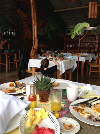 Leaves and Lizards Arenal Volcano Cabin Retreat: Great open air dining with view of volcano